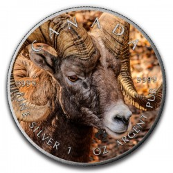 2016 1 Oz Bighorn Sheep Antique Maple Leaf