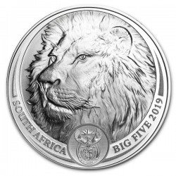 2019 1 Oz South African Lion (In Card)