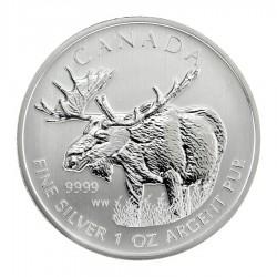 2012 1 Oz Canadian Moose
